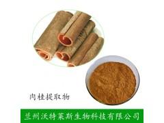 肉桂提取物 10:1 肉桂多酚 厂家现货供应 保健品原料