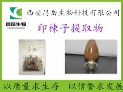 印楝子提取物 厂家现货包邮 长期供应 多规格 印楝子粉