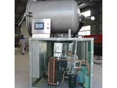 真空冻干机-真空冷冻干燥机