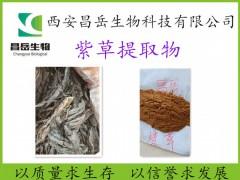 紫草提取物 固体粉末状 多规格 厂家现货供应 价格实惠
