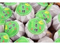 天马小青柑价格 提供一手货源老树宫廷普洱橘子茶500g