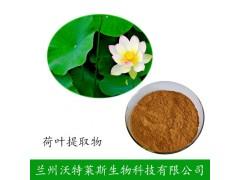 荷叶碱 5%含量 荷叶提取物 荷叶碱粉原料多规格