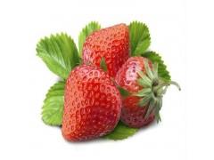 秋之润供应食品级草莓香精 1kg起订
