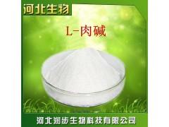 厂家直销L-肉碱使用说明报价添加量用途 左旋肉碱