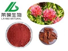 红景天提取物 红景天甙 植物提取物系列 厂家直销