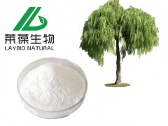 白柳皮提取物 15%-98%水杨甙 纯天然化妆品原料