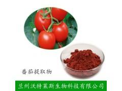 番茄红素  兰州沃特莱斯生物科技   包邮