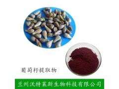 葡萄籽提取物 水溶 95% 厂家直销 优质原花青素