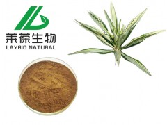 丝兰提取物 丝兰皂甙 新食品及动物饲料级添加剂