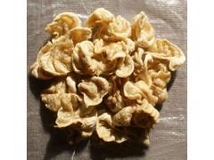 豆皮机腐竹节能省电 豆制品零食加工设备全不锈钢xy1