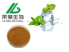 绿茶提取物  20%-98%茶多酚 保健品化妆品原料供应