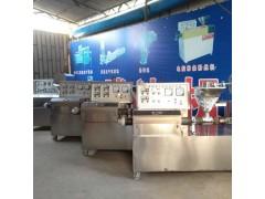 豆皮机牛排免费培训 豆制品生产线全不锈钢xy1