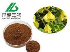 水皂角提取物  8%黄酮 新食品及配料 sc生产厂家