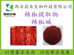 辣椒提取物 辣椒碱 厂家现货包邮 常年供应 原料提取