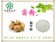 菊粉 菊芋粉 95%含量 天然食品添加剂 斯诺特厂家