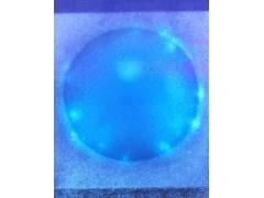 大肠杆菌(荧光法)测试片