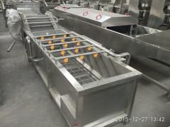 茄子杏鲍菇蔬菜清洗机