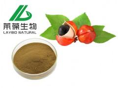 瓜拉纳提取物 纯天然植物提取物系列 SC 生产厂家直供