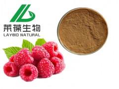 覆盆子提取物 98%覆盆子酮 天然食品添加剂 厂家供应