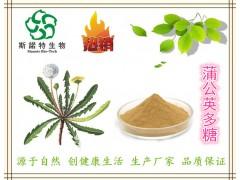 蒲公英多糖30%-50%  蒲公英提取物 生产厂家 现货供应