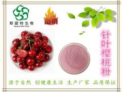 巴西针叶樱桃果汁粉 25%维生素C高含量 速溶樱桃VC粉