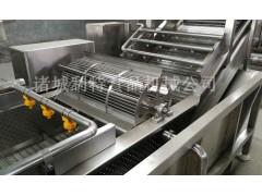 黑木耳食用菌清洗机 食用菌蘑菇清洗机 竹笋清洗机厂商利特