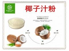 海南椰子粉 椰子汁浓缩粉 固体饮料优选 厂家包邮