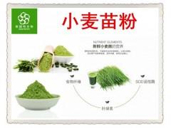 食品级 小麦苗粉 小麦草粉 多膳食纤维 铁 钙 SOD活性酶