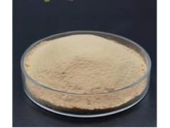 供应出口级富硒酵母98%