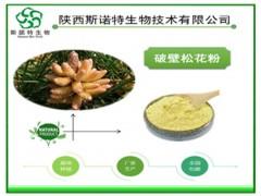 破壁松花粉 松花孢子粉99% 高品质保健原料 斯诺特生物