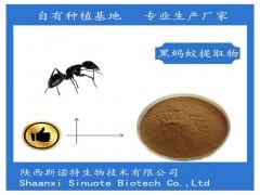黑蚂蚁提取物 黑蚂蚁粉99%活性 拟黑多刺蚁提取物