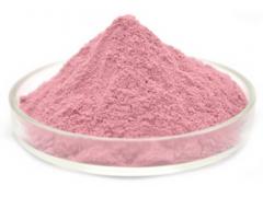新鲜大樱桃粉 高倍浓缩粉 全水溶99% VC丰富 厂家优惠