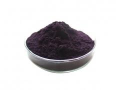蓝莓粉 高比例蓝莓提取物 全水溶99% 厂家直销