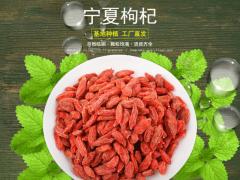 宁夏枸杞厂家 500g罐装特优级红枸杞批发
