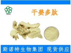 干姜多肽 75%规格 1000道尔顿以下 高生物活性 出厂价