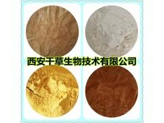 甜地丁提取物甜地丁浸膏 厂家生产定制水溶性甜地丁浓缩粉