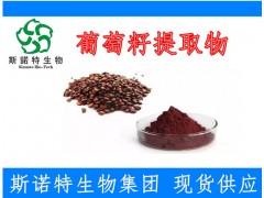原花青素98% 葡萄籽提取物  新资源食品 天然抗氧化剂