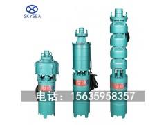 QS/QSR型小型潜水电泵