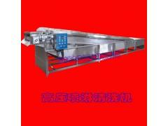 全钢制造高压式芹菜清洗机