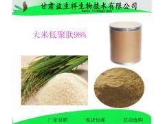大米低聚肽98% 大米蛋白  大米多肽 320