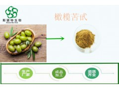 橄榄叶提取物 橄榄苦甙70% 国标 欧标均有 植物提取物