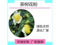 茶树花浓缩粉 10:1 茶树花提取物粉现货厂家