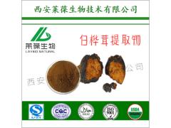 白桦茸多糖 有机白桦茸提取物 有机食用真菌提取物系列