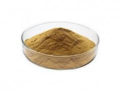 厂家推新:陈皮提取物 速溶粉 99%水溶性 定制生粉原粉