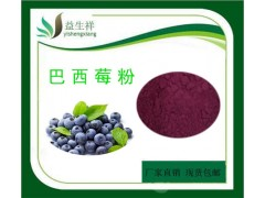 巴西莓粉 阿萨伊果粉 速溶巴西莓果粉