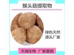 猴头菇粉10:1 猴头菇浓缩粉天瑞生物厂家