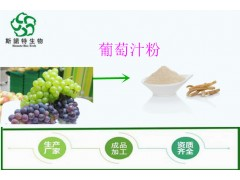 葡萄浓缩粉 水果粉 多种规格 可订制 1KG起订 包邮