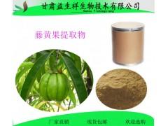 藤黄果提取物10:1 藤黄果速溶粉 藤黄果酵素粉