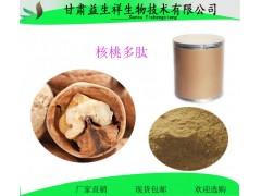 核桃肽粉 核桃小分子低脂肽粉 核桃饼粕提取物