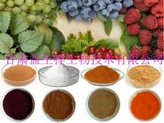 茶氨酸 食品级 L-茶氨酸 包邮